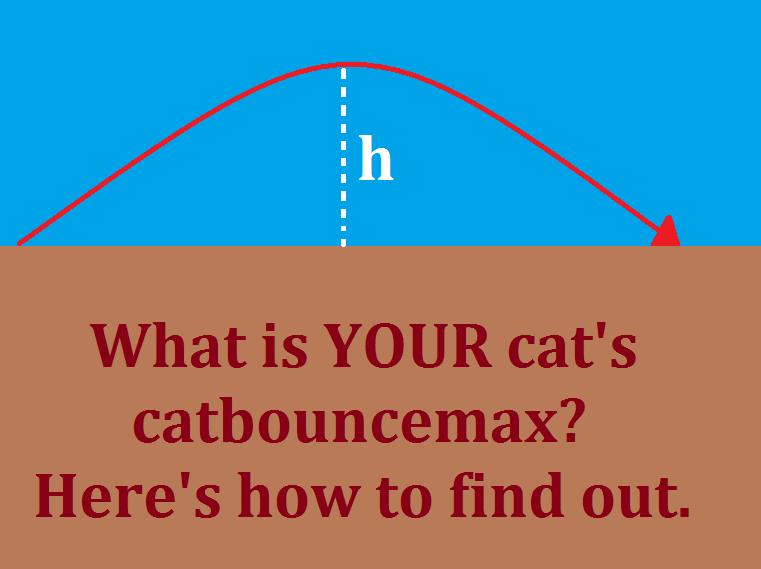 catbouncemax