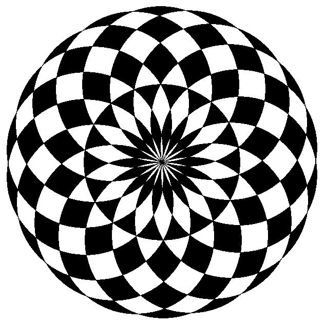 19 circles